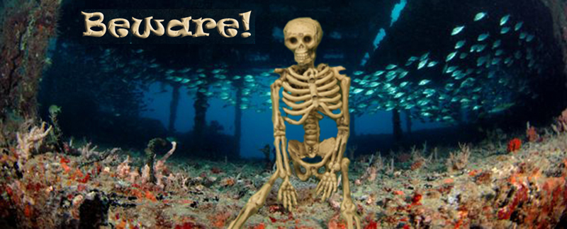 tracey skeleton wide